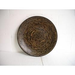 Plate 12 Cocostraight
