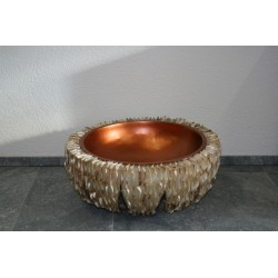 VAS 08292A Brown Lipshell